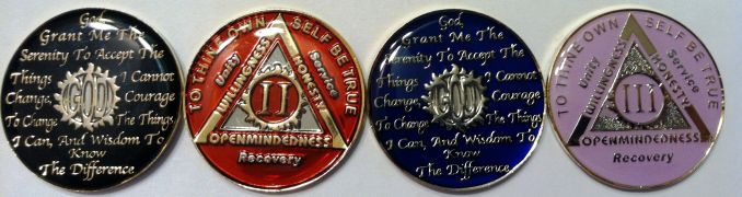 Nickle Plated AA Founders Medallion Anniversary Coin  AA Any Year /& Color